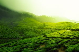 holiday spots in india